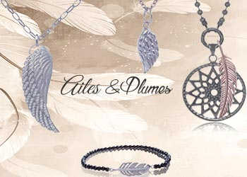 Ailes&Plumes